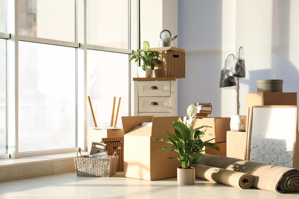 professional packer and mover services