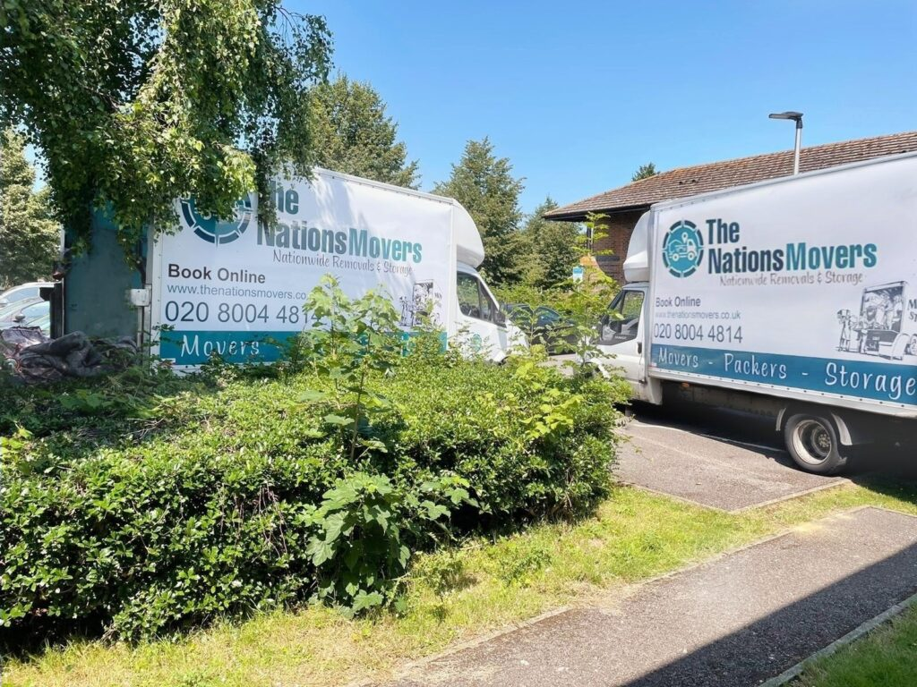 professional packers and movers london